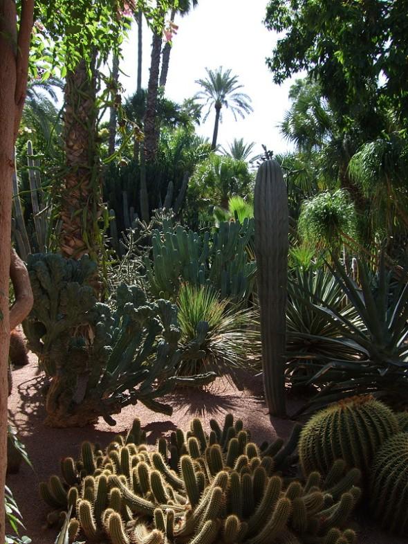 Marjorelle gardens.6JPG